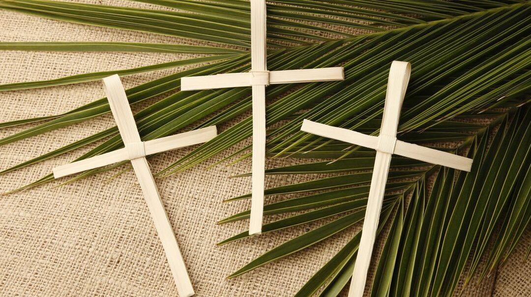 Nedjeljna pobožnost – 6. nedjelja Korizme | Palmarum (Cvjetnica)