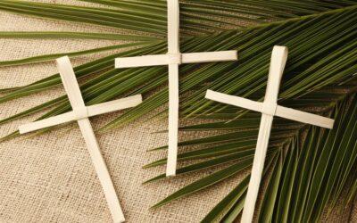 Nedjeljna pobožnost – 6. nedjelja Korizme | Cvjetnica (Palmarum)