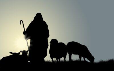 Nedjeljna pobožnost – 2. nedjelja nakon Uskrsa | Misericordias Domini